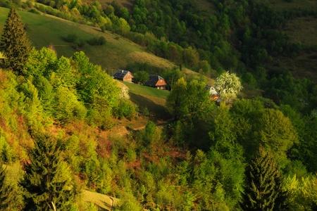 carpathian mountains: Farmhouse with a blossoming tree on the side of the Carpathian Mountains on a spring evening