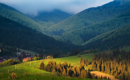 carpathian mountains: Spring cloudy morning rural landscape in the Carpathian mountains