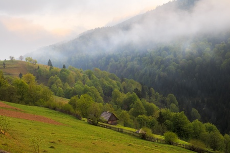 carpathian mountains: Cloudy morning spring rural landscape in the Carpathian mountains