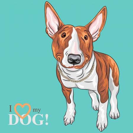 Szkic kolor Vector wesoła uśmiechnięta Dog Excellent Bull Terrier w czarne podpalane samodzielnie na białym tle Ilustracje wektorowe