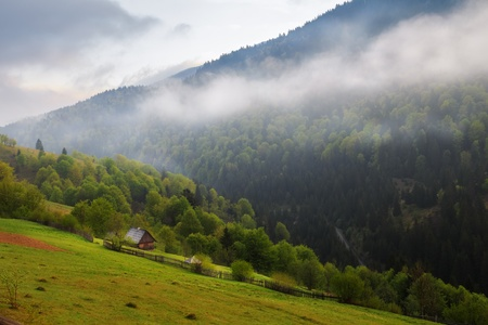 carpathian mountains: Spring morning rural landscape in the Carpathian mountains  Cloudy sky and mist over the forest  Stock Photo