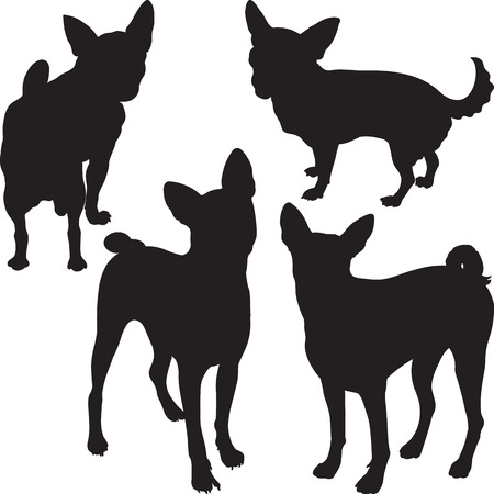 set of silhouettes of dogs Chihuahua, Basenji breed in the rack Vector