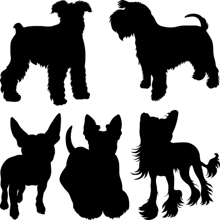 set of silhouettes of dogs schnauzer, terrier, Scottish Terrier, Bull Terrier, Chinese Crested breed in the rack Vector