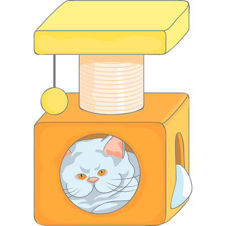 cute british cat in the cat house with scratching posts, isolated on the white background Vector