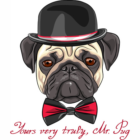 Vector color sketch hipster serious dog fawn pug breed in a hat and bow tie Illustration