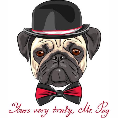 Vector kleur schets hipster ernstige hond fawn pug ras in een hoed en strik Stock Illustratie