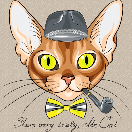 color sketch of the red cartoon hipster cat Abyssinian breed with flashing amber eyes  Illustration