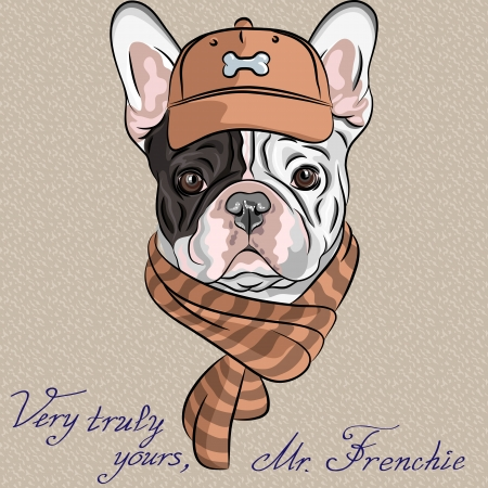 vector hipster dog  French Bulldog breed in a brown cap and scarf Çizim