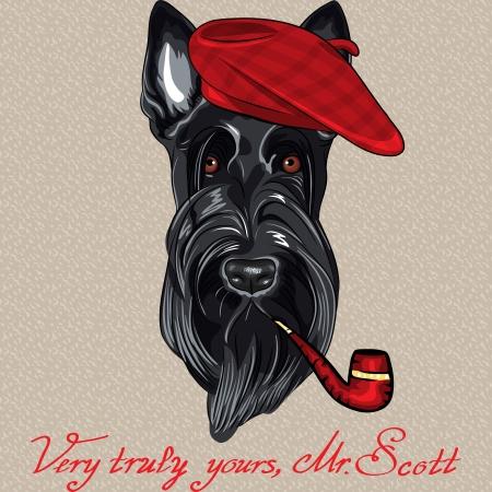 Vektor-Hipster Hund Scottish Terrier Rasse im roten Barett mit einem Rohr