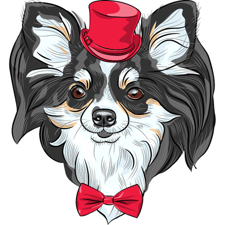 vector color sketch of the cute hipster dog Chihuahua in the red hat with bow tie Vector