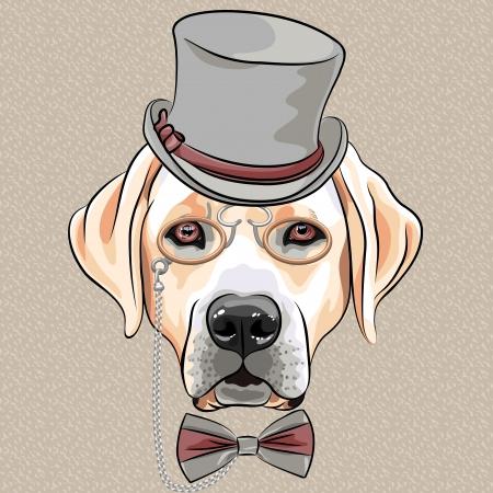 vector ernstige cartoon hipster hond Labrador Retriever in een grijze zijde hoed, pince-nez en vlinderdas