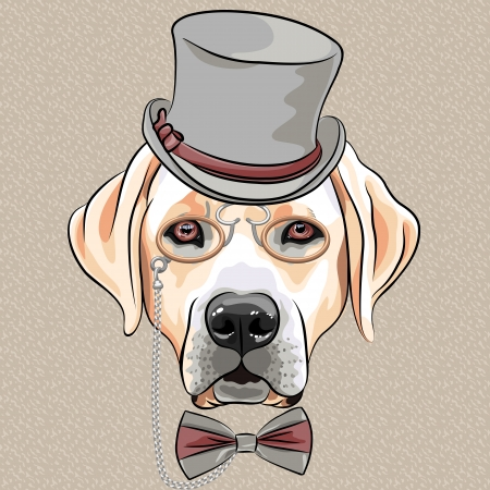 vector serious cartoon hipster dog Labrador Retriever in a gray silk hat, pince-nez and bow tie Illustration