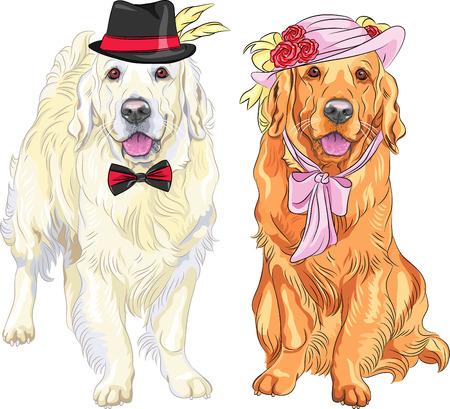 dog: 벡터 소식통 모자에 흰색 강아지 래브라도 신사 쌍의 꽃과 리본 모자와 넥타이를 빨간 래브라도 여자 활 목에 활 일러스트