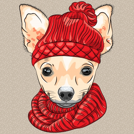 vector kleur schets van de cartoon hipster schattige hond ras Chihuahua in gebreide muts en sjaal Stock Illustratie