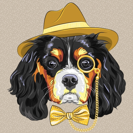 vector hipster dog breed King Charles Spaniel in a gold hat, monocle and bow tie Illustration