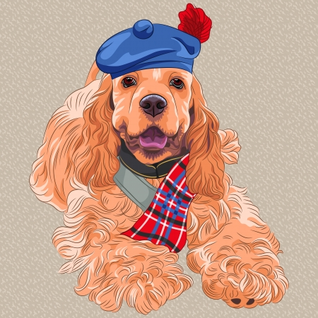 Vector cartoon hipster dog breed American Cocker Spaniel  in Scottish Tam Illustration