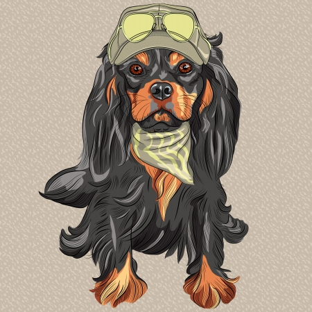 spaniel: vector Hipster red dog Cavalier King Charles Spaniel breed in cap and cravat khakis and glasses