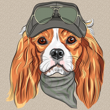 black haired: vector Hipster red dog Cavalier King Charles Spaniel breed in cap and cravat khakis and glasses