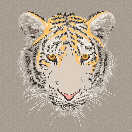 the amur: Vector sketch of a serious amur tiger