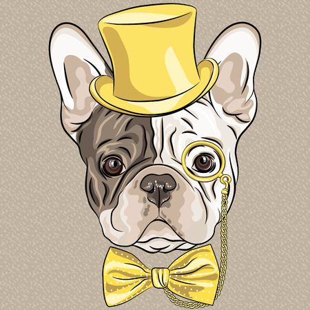 french style: Vector hipster dog French Bulldog breed in a gold hat, glasses and bow tie Illustration