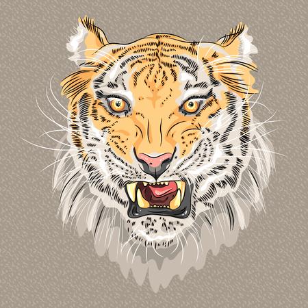menacing: closeup portrait of menacing growling amur tiger Illustration