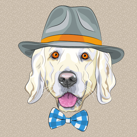 hipster dog Golden Retriever breed in a gray hat and tartan bow tie
