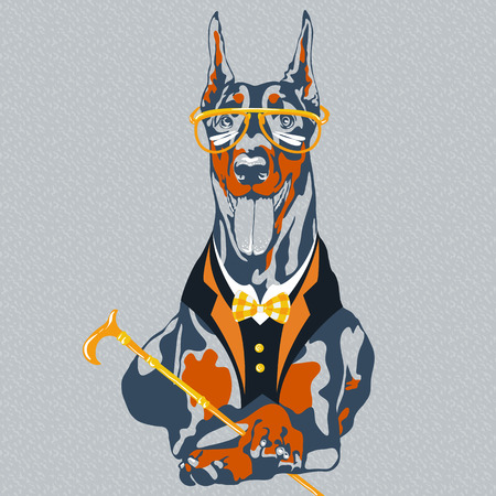 pinscher: hipster dog Doberman Pinscher breed in glasses and a suit with a bowtie and a cane Illustration