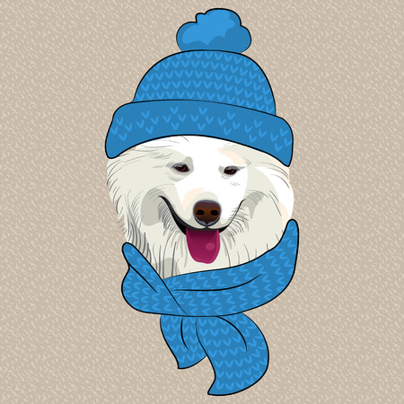samoyed: hipster Samoyed dog smile in a blue knitted hat and scarf Illustration
