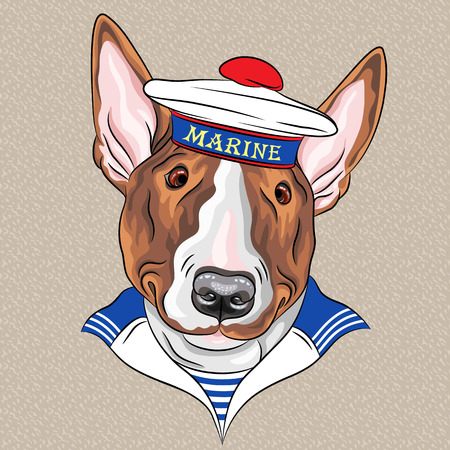 matroos hond Bullterrier ras zonder pieken dop en gestreepte vest