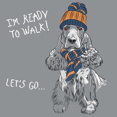 cocker: Hipster Hund Rasse English Cocker Spaniel sitzen in einer Strickm�tze und Schal Illustration