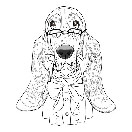 basset hound: hipster dog Basset Hound breed in a glasses and bow tie Illustration