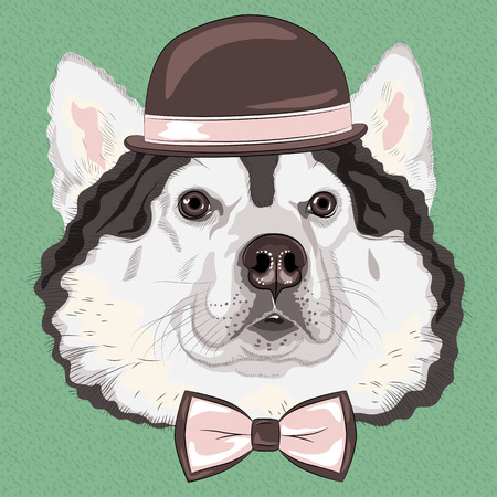 hipster dog Alaskan Malamute breed in a brown hat and bow tie Vector