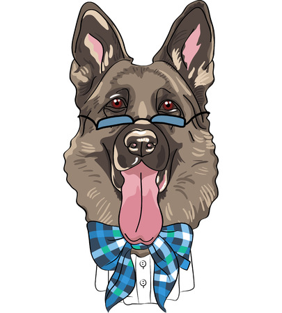 hipster dog German shepherd breed in a blue glasses and bow tie Vector