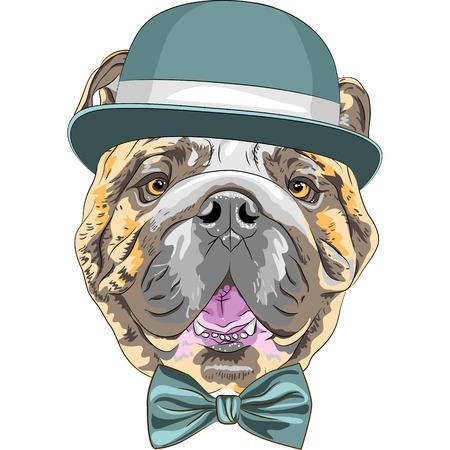 Hipster Hund Rasse Englische Bulldogge in einem blauen Hut und Fliege Illustration