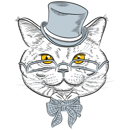 bowtie: sketch closeup portrait of funny British cat hipster in the gray hat, eyeglasses and bowtie Illustration