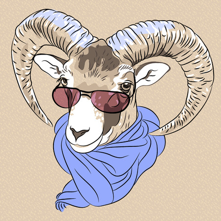 hoofed mammal: sketch closeup portrait of funny Alpine ibex in red eyeglasses and scarf