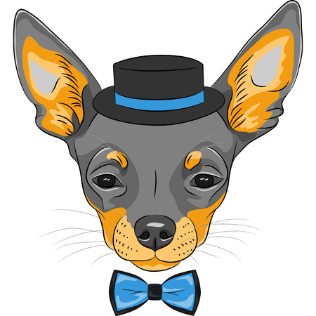 Vector color sketch of the cartoon hipster cute dog Chihuahua breed in hat and bow tie