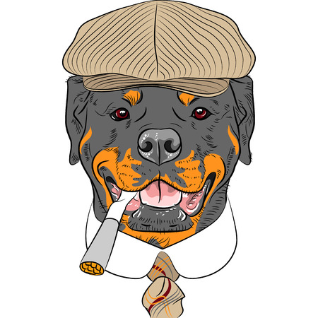 hipster dog Rottweiler breed in a brown cap, with a tie and a cigarette