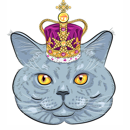 sketch closeup portrait of funny British cat hipster in gold crown