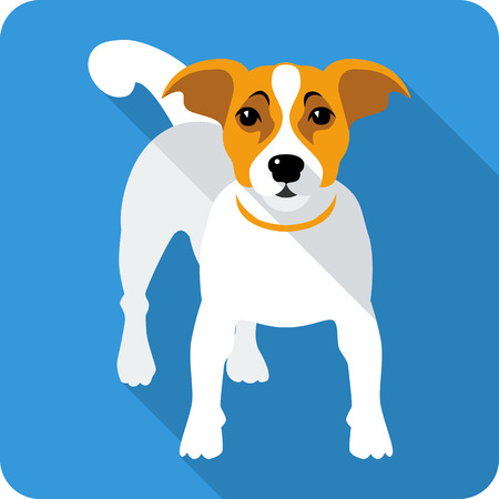 terrier: dog Jack Russell Terrier icon flat design