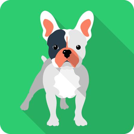 Hund Französisch Bulldogge Symbol flaches Design Vektorgrafik