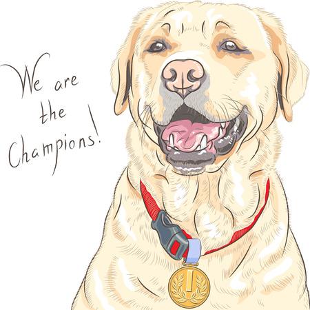 Sonriendo feliz perro de raza amarilla campeón Labrador Retriever