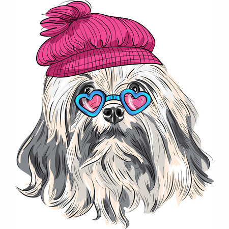 Vector hipster dog Lion Bichon (Lowchen) breed in a red hat and heart glasses