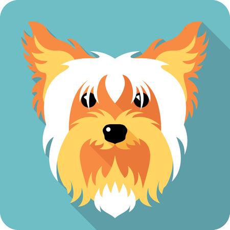 yorkshire terrier: dog Yorkshire terrier icon flat design Illustration