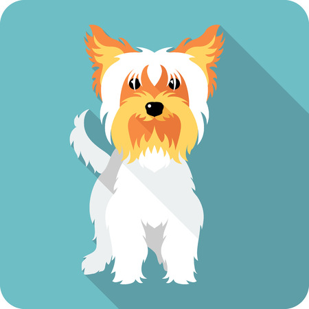breeds: dog Yorkshire terrier standing  icon flat design