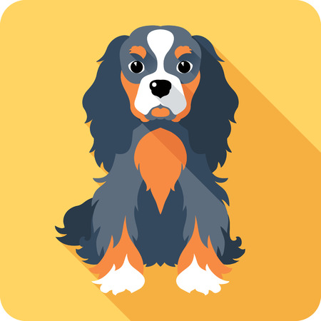 dog Cavalier King Charles Spaniel sitting icon flat design