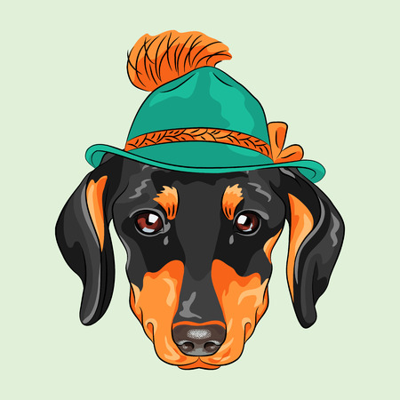 hipster dog dachshund breed in a green tyrolean hat Çizim