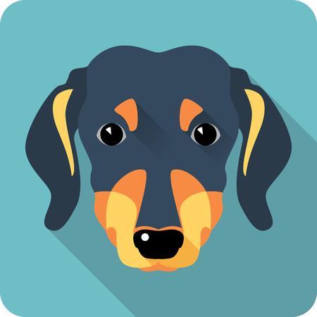 cute dog: dog dachshund icon flat design