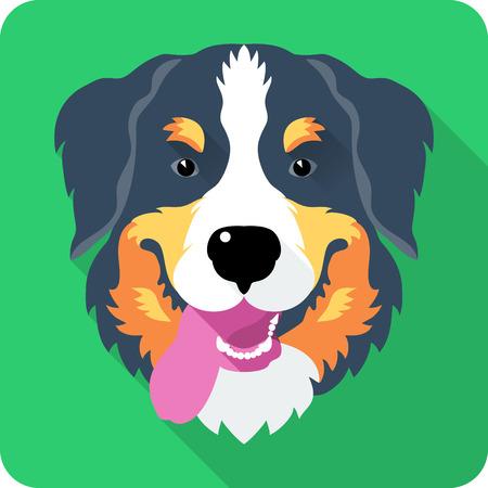 bernese: head dog Bernese Mountain Dog icon flat design