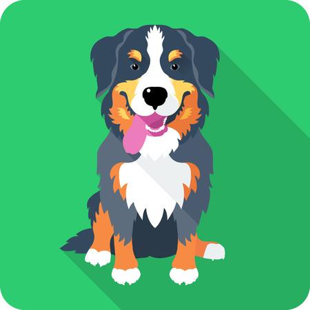 bernese: Dog Bernese Mountain Dog sitting icon flat design Illustration